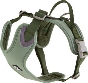 Hurtta Weekend Warrior harness eco Oranje / Groen