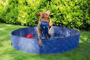 Beeztees zwembad Doggy Dip