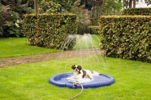 Beeztees Sprinkler Mat Stay Cool - Hondenmat - Blauw - 100 cm