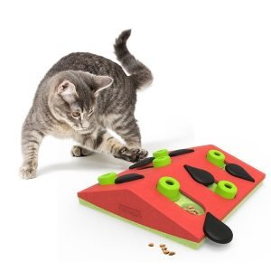 Nina Ottosson kattenspel puzzle & play melon madness.