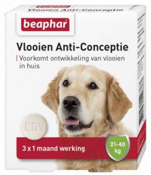 Vlooien Anti-Conceptie hond