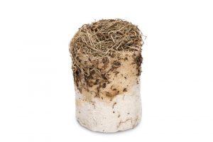 Beeztees Luffarol Paardenbloem - Knaagdierensnack - 10x13 cm