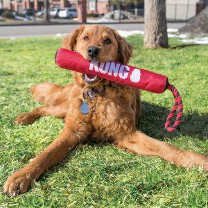 Kong hond Signature stick with rope, medium.